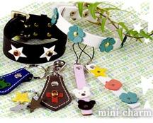 Mini Charm
