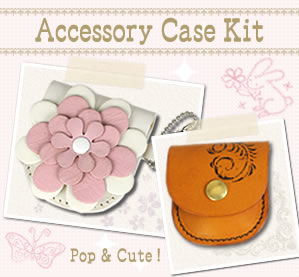 Accessory Case Kit