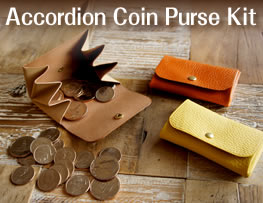 Accordion Coin Purse Kit