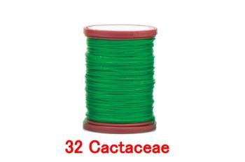 32 Cactaceae