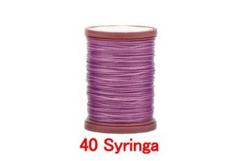 40 Syringa