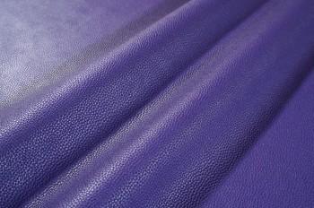 17 Purple