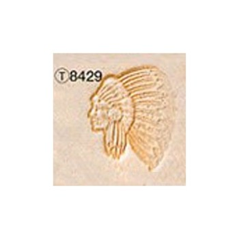 Pictorial Stamp(Indian Chief)