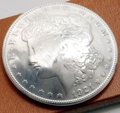 Morgan Dollar 1921  (Obverse) XF/AU <Screw Back>